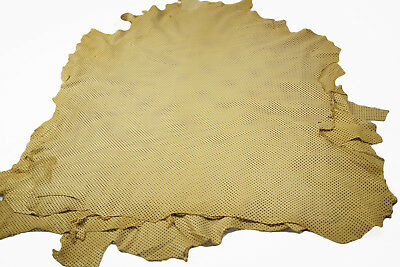Light Tan Sheepskin hides - Perforated Sheep leather x2 skin lots
