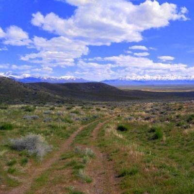 43.58 Acres of Prime Nevada Land with Full Mineral Rights!