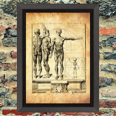 Ancient Art Weird Print Oddity Occult Antique Effect Paper Curio Demon map