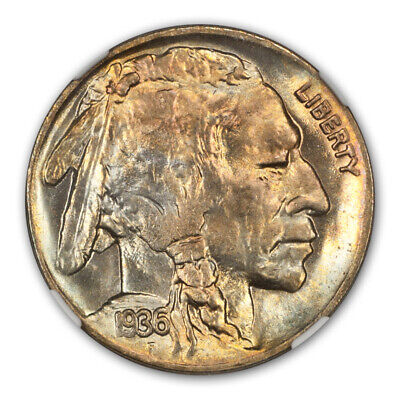 1936-D Buffalo Nickel Type 2 5C NGC MS67+