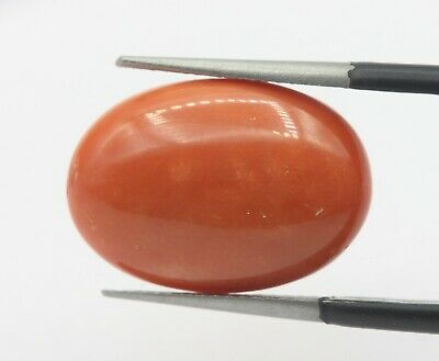 8.65 Ct Natural Coral Unheated Untreated From Italy Loose Gemstone