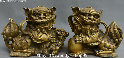 Chinese Bronze Fengshui Fu Foo Dog Guardian Beast Lion Leo Animal Statue Pair