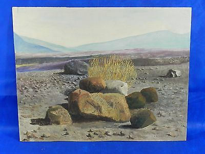 """Original Vintage Acrylic on Panel Board Painting Signed by W. Richardson 28""""x22"""""""