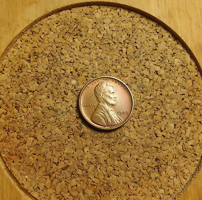 """1909 VDB Lincoln Wheat Cent Penny  LH325 AU/BU  OLD """"TUCK"""" FREE FAST SHIPPING"""