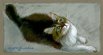 ACEO Limited Edition-Please please, Cat art print of an original pastel painting