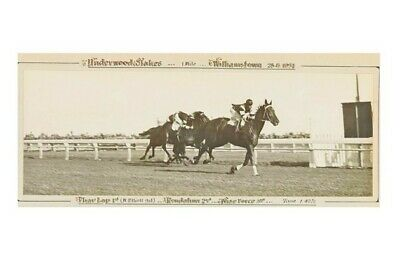 PHAR LAP - 29th victory Underwood Stakes 25th Aug 1931 modern Digital Postcard