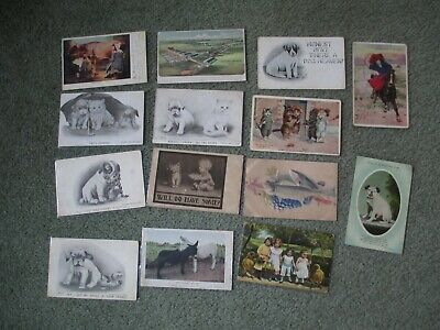 Vintage Postcards Animals - Cats - Dogs - Pets - Other Advertising 14 Cards Lot