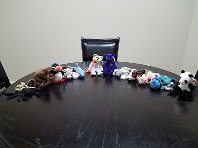 12 Retired Beanie Babies in NM and New Condition - Peace, Princess