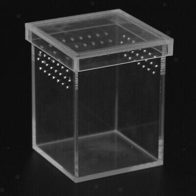 Reptile Feeding Container Snake Insect Spider Breeding Tanks Box Case