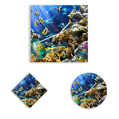 WALL CLOCK - CLOCK ON GLASS Reef Fishes Ocean - 12 SHAPES - UK 2662