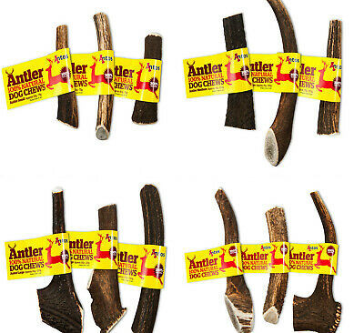 Antler Small Medium Large X Large Antos Stag Fallow Deer Bar Horn Dog Chew Treat