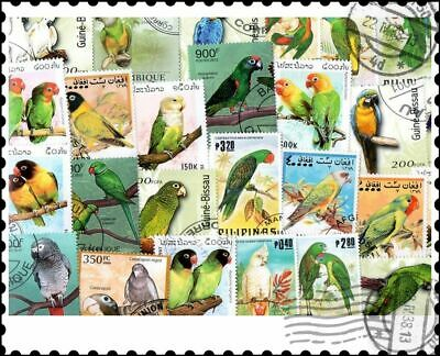 Parrots : 25 Different Stamps Collection