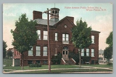 Fisher Avenue PS 2 Public School WHITE PLAINS New York—Antique Postcard 1920s