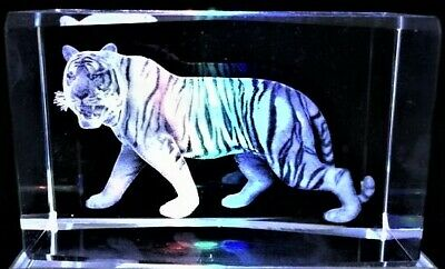 3D WHITE TIGER BENGAL BIG WILD CAT CRYSTAL Laser+4 LED LIGHT BASE NEW GIFT BOXED