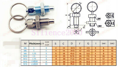 M6-M8-M10M12 Index Plunger With Ring Pull Spring Loaded Retractable Locking Pin