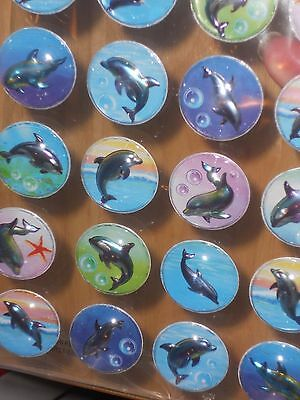 Metallic Shiny w/Touch Of Rainbow Color Dolphin Pop Up Stickers w/Clear Dome Top