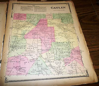 Original 1869 Map Town Of Catlin Ny Chemung Co Residents Listed