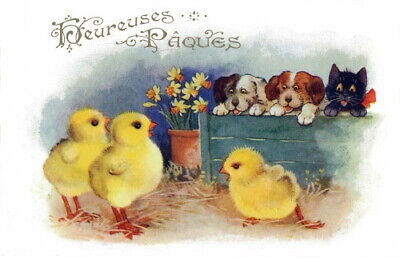 1921 Comique French Easter Chicks Watched by Puppy Dogs~Kitty Cat~NEW Note Cards
