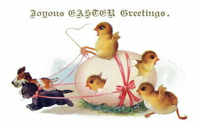 1920s Comique French Easter Chicks~Egg Pulled by Puppy & Kitten~NEW Note Cards