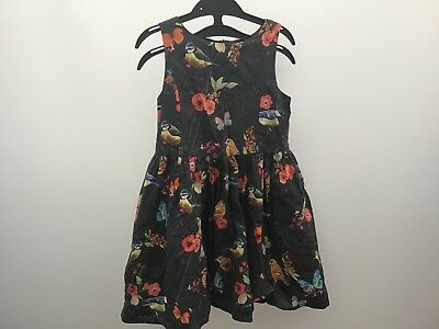 Next Girls Sleeveless Bird Flower Floral Print Cotton Dress Age 4 years Party