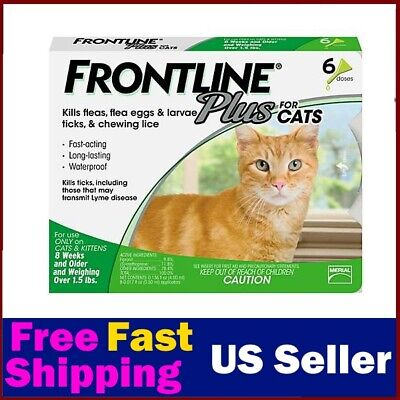 Frontline Plus Flea & Tick Control for Cats, Kittens Over 1.5 lbs, 6 Doses