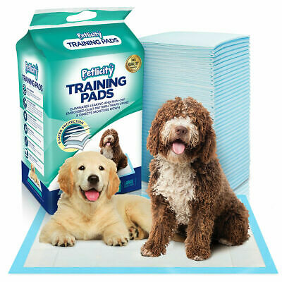 Dog Puppy Extra Large Training Pads 50Pk Pad Wee Wee Floor Toilet Mats 60 x 60cm
