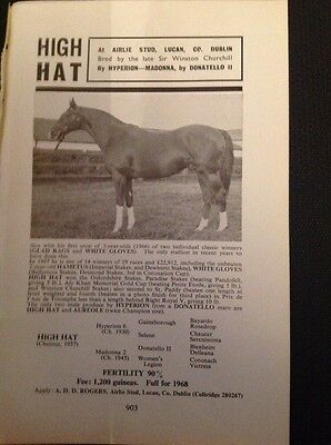 H8-1 Ephemera Advert 1967 The Airlie Stud Horse High Hat Winston Churchill