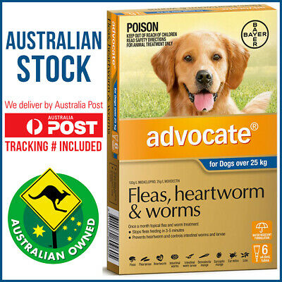 Advocate Blue 6 for Extra Large Dogs Over 25 kg -  6 Pack - Flea Worm Heartworm