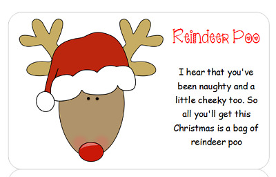 Ideal For Fairs Bags 32 Reindeer Poop Stickers for Party Cones School Fetes