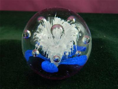 paperweight with a white and blue flower and  bubbles