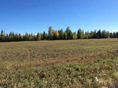 80 Acres of land for sale