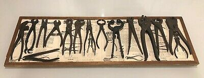 Display Board Vintage Pliers And Cutters; Museum Piece; Old Tool; Collectable