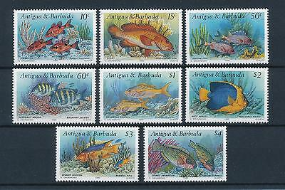 [47273] Antigua & Barbuda 1990 Marine life Fish MNH