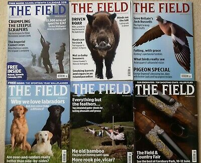 THE FIELD Magazine - 12 copies Jan to Dec 2016