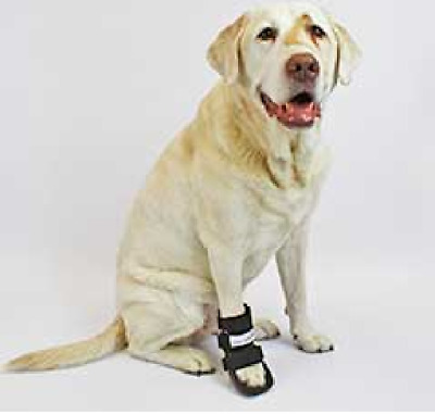 Walkin' Pet Splint for Dogs, Canine Bootie Style Leg Splint Size Medium