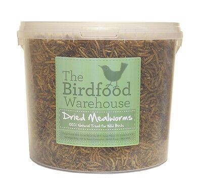 Norfolk Feeds Dried Mealworms 5ltr - Wild Bird Food 5 litre Bucket, 5l Treat Tub