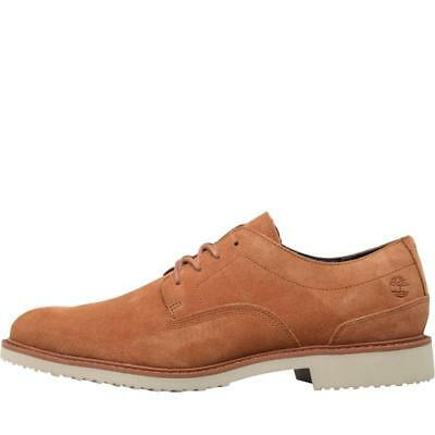 9b20bb303261b Timberland Brook Park Light Oxford Shoes UK 10 New Boxed EU 44.5 Suede Tan  Brown