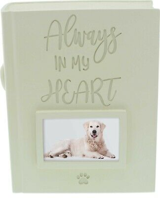 AngelStar Book Shaped Pet Urn Capacity of 158 cubic inches Always in My Heart