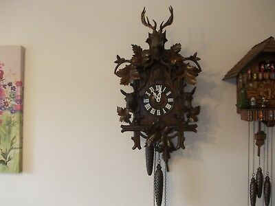 Large adn Stunning Antique Cuckoo Clock (C1900)