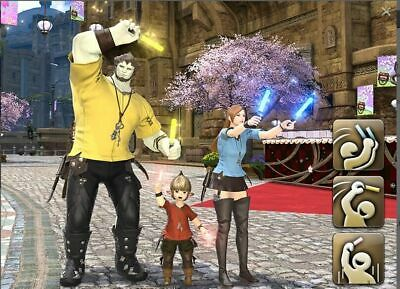 FINAL FANTASY XIV FFXIV FF14 Item Emotes Emote Songbirds Cheer Set