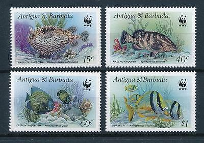 [53832] Antigua & Barbuda 1987 Marine life WWF Fish MNH