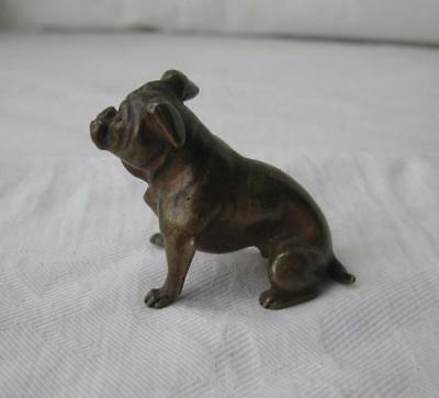 Bronze Bulldog Boxer Pug Dog c1880 French Antique Vienna Miniature Napoleon III