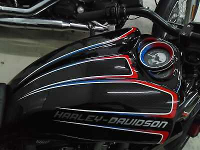 Harley-Davidson  V ROD Night road  Airbox Cover RADICAL II 2002-2017