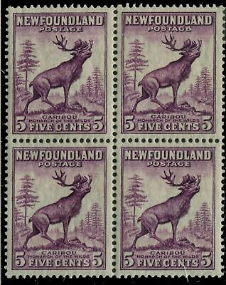 Newfoundland 191 SG  MNH VF 5c 1932-37 Issue [N3717] CV=$12.00