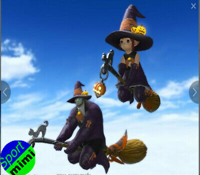 FINAL FANTASY XIV FFXIV FF14 Item Mounts Mount: Witch's Broom (Single Character)