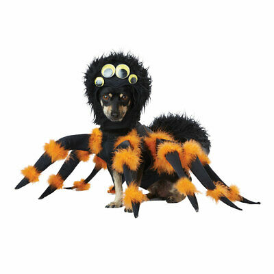 Spider Pup Halloween Pet Costume size Large