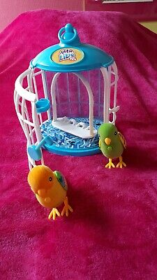 little live pets birds with cage