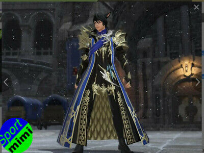 FINAL FANTASY XIV FFXIV FF14 Item Character Aymeric's Attire