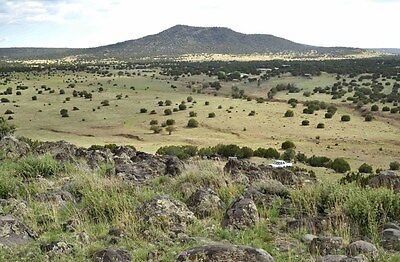 6 ACRES DUTCH MOUNTAIN RANCH - $120/mo, VERNON ARIZONA LAND WITH POWER AND TREES