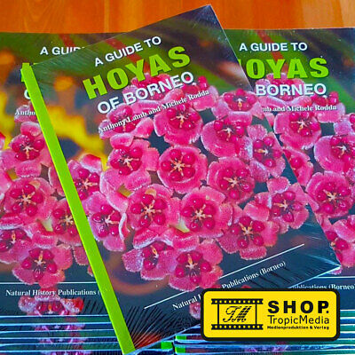 % Summer Super SALE SOFTCOVER - A GUIDE TO HOYAS OF BORNEO  (A. LAMB, M. RODDA)%